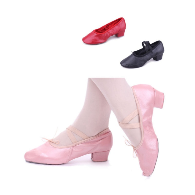 Close Toe Dance Shoes Chunky Heel Leather Dance Shoes